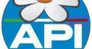 Simbolo di API